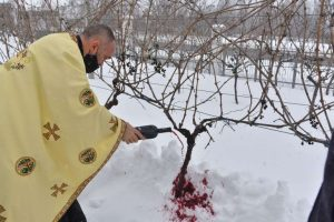 Macedonian wine patron saint