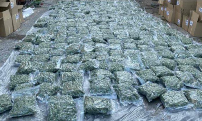 200 kilograms of marijuana captured in Macedonia